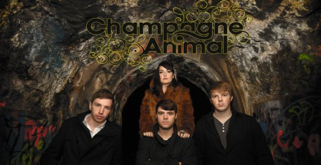Up and Comers: Champagne Animal