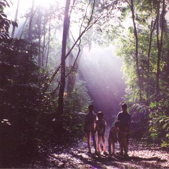 Halves – Boa Howl | Review