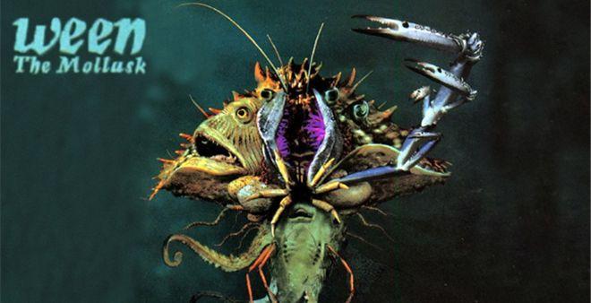 Ween-The-Mollusk