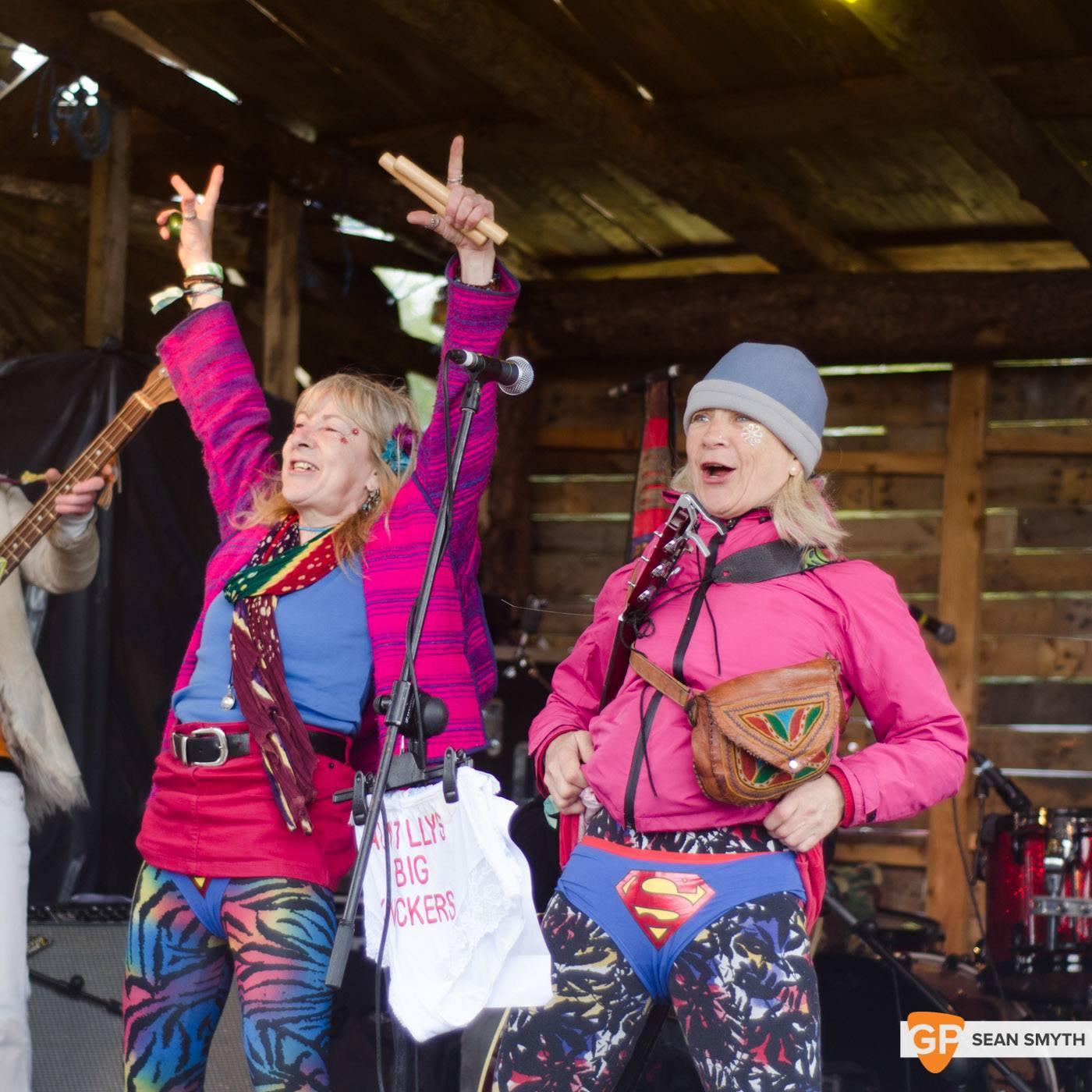 The Twisted Sisters - Saturday at Vantastival by Sean Smyth (1-5-14) (15 of 45)