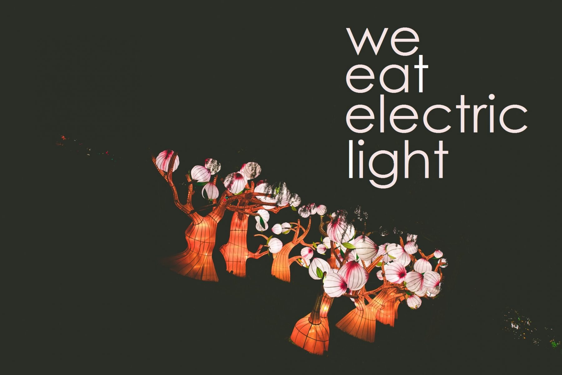 WeEatElectricLight2